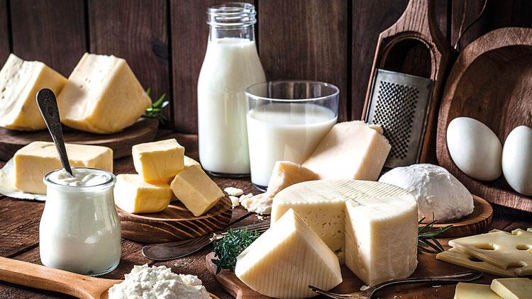Yoğurt Mayası Nasıl Bulundu – Süt Ürünlerini Bir Sineğe Borçluyuz!